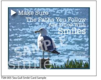 005 Sample Sea Gull Smile