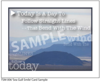 006 Sample Bend With The Wind