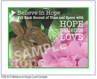 013 Sample Believe in Hope