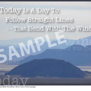 TSM 006SP Bend With The Wind Sample Small Poster