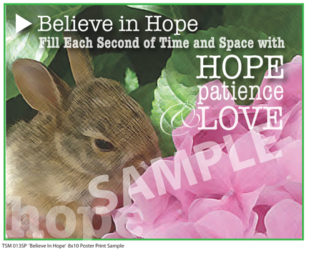 TSM 013SP Believe In Hope Sample Small Poster