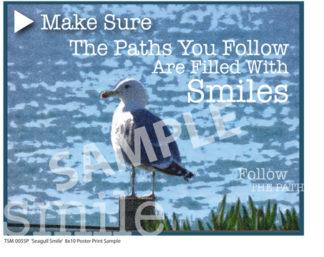 Sea Gull Smile