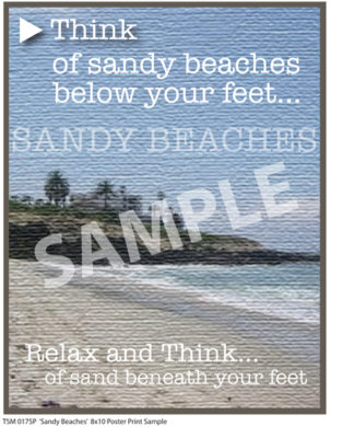 Sandy Beaches