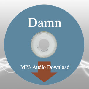Damn Questions the Book Audio MP3 Download