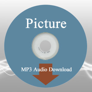 Picture Questions the Book Audio MP3 Download